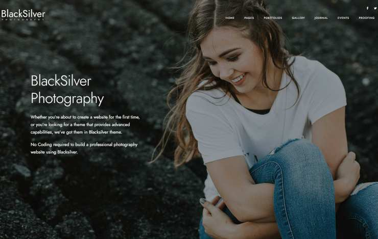 blacksilver WordPress themes