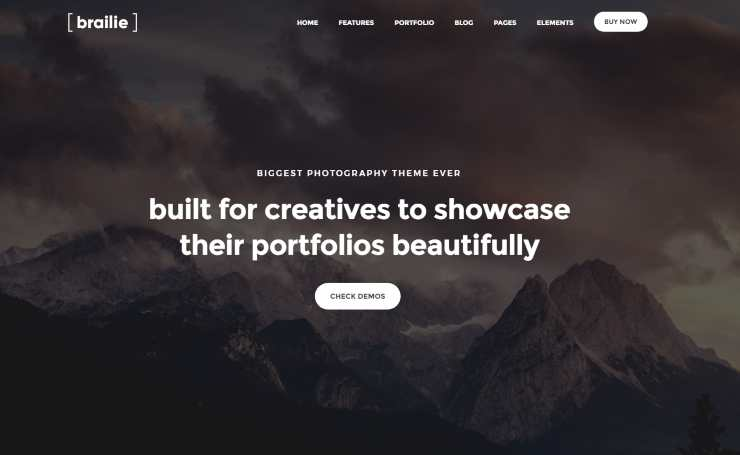 brailie WordPress theme