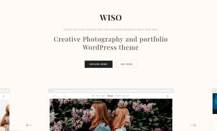 wiso WordPress theme
